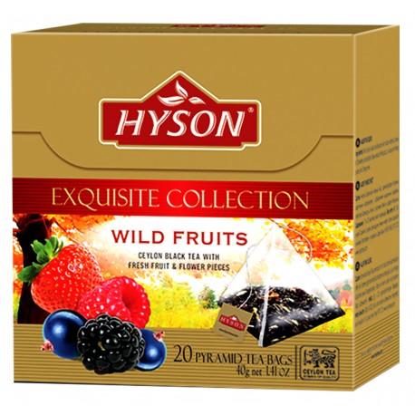 Hyson Schwarzer Tee Waldfruechten pyramide 2g x 20